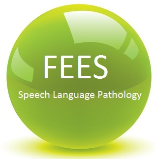 Child Language Therapy Fees